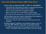 how can software detect amd dual core