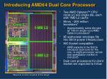 introducing amd64 dual core processor