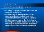 proteus project bitext maps and alignment