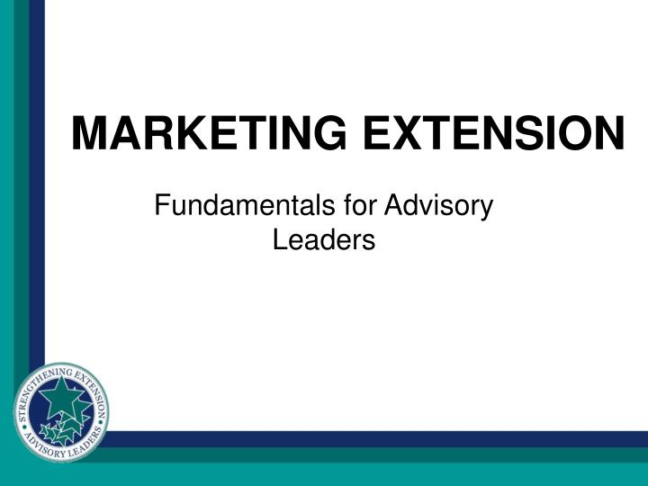 marketing extension n.