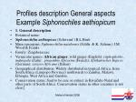 profiles description general aspects example siphonochiles aethiopicum