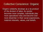 collective conscience organic