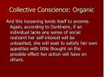 collective conscience organic4