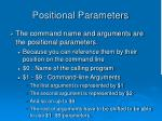 positional parameters
