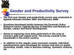 gender and productivity survey