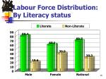 labour force distribution by literacy status