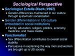 sociological perspective