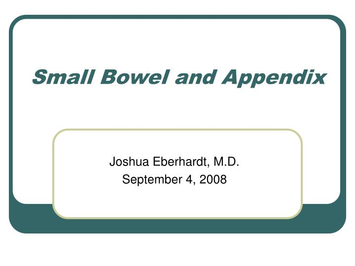 small bowel and appendix n.