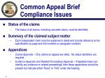common appeal brief compliance issues