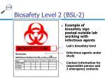biosafety level 2 bsl 24