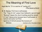 the meaning of first love1