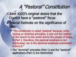 a pastoral constitution