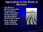 agriculture in the book of mormon