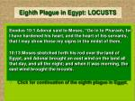 eighth plague in egypt locusts