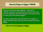 second plague in egypt frogs