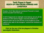 tenth plague in egypt death of firstborn humans and livestock