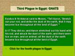 third plague in egypt gnats