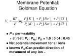membrane potential goldman equation