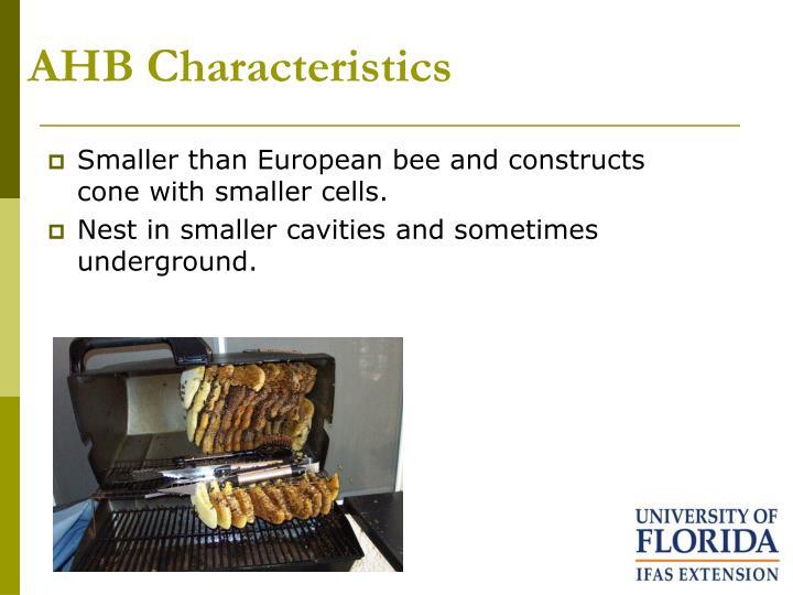 AHB Characteristics