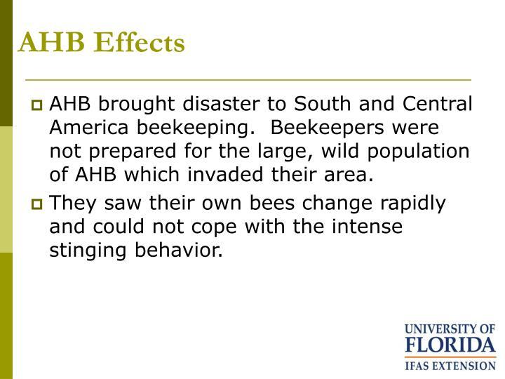 AHB Effects