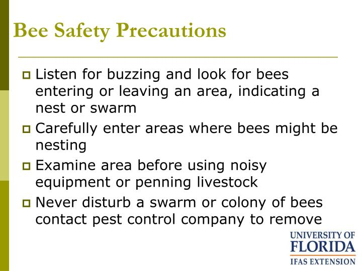 Bee Safety Precautions
