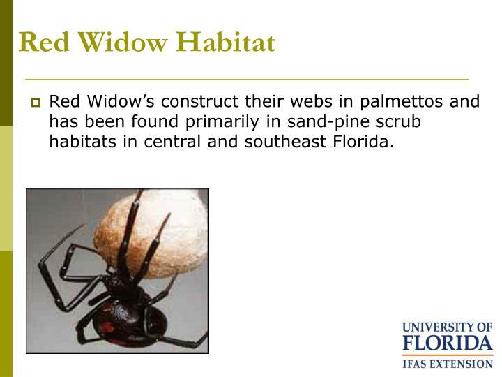 Red Widow Habitat