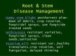 root stem disease management