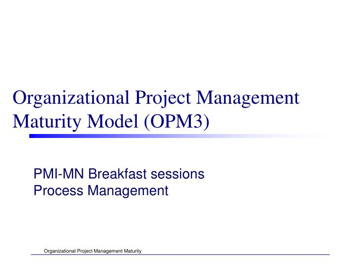 organizational project management maturity model opm3 n.