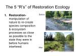 the 5 r s of restoration ecology