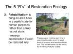 the 5 r s of restoration ecology1