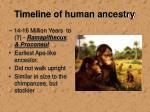 timeline of human ancestry