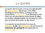 le quorn4