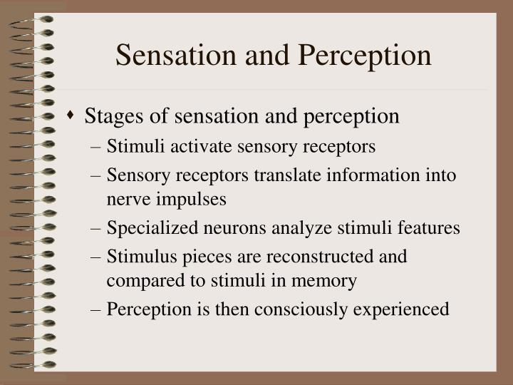an analysis of sensation and perception Perception (from the latin perceptio) is the organization, identification, and interpretation of sensory information in order to represent and understand the a.
