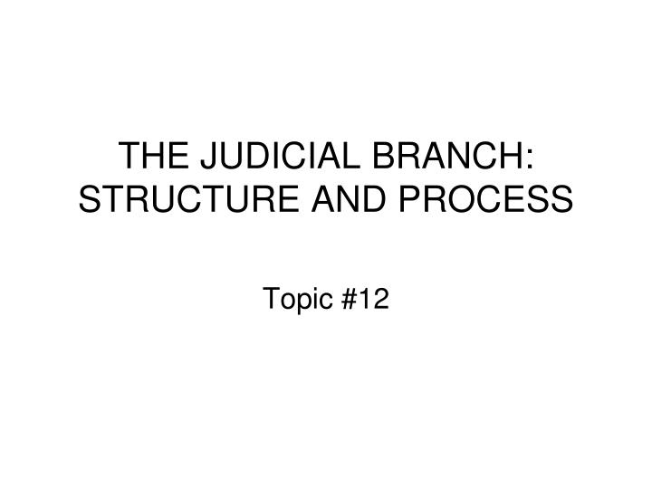 the judicial branch structure and process n.