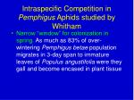 intraspecific competition in pemphigus aphids studied by whitham