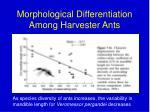 morphological differentiation among harvester ants