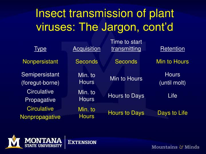 Insect transmission of plant viruses: The Jargon, cont'd