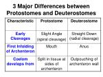3 major differences between protostomes and deuterostomes