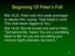 beginning of peter s fall5
