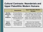 cultural contrasts neandertals and upper paleolithic modern humans1