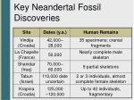 key neandertal fossil discoveries