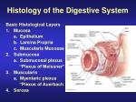 histology of the digestive system