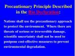 precautionary principle described in the rio declaration