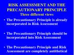 risk assessment and the precautionary principle three different views