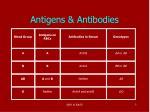 antigens antibodies