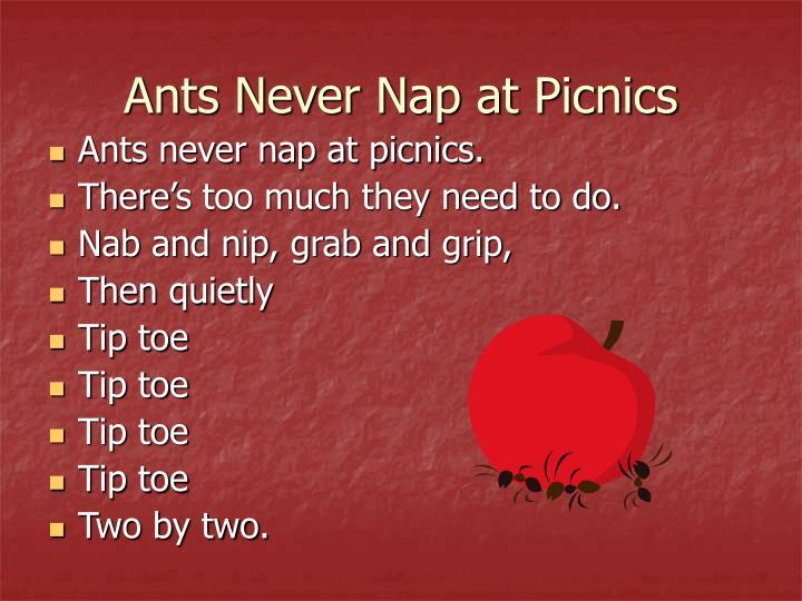 Ants Never Nap at Picnics