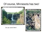 of course minnesota has two