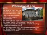 professional life