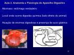 aula 2 anatomia e fisiologia do aparelho digestivo18