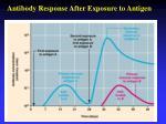 antibody response after exposure to antigen